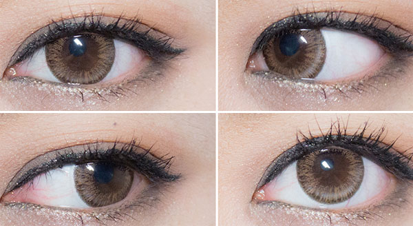 ICK Aida Brown contacts