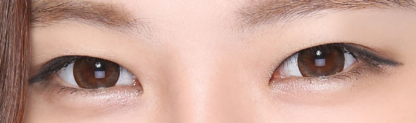 [Poly Touch] ANN Barbie Brown Lens 13.6mm (2weeks)