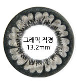 [EyeTeck contact lenses] Artric 2 Color Gray 13.2mm